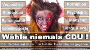FDP-Hoevelhof (46)