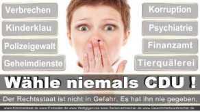 FDP-Hoevelhof (55)