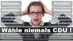 FDP-Hoevelhof (80)