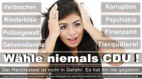 FDP-Hoevelhof (84)