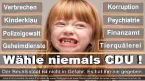Thomas-Koerner-FDP-Hoevelhof (10)