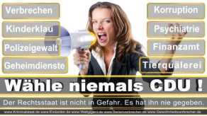 Thomas-Koerner-FDP-Hoevelhof (100)