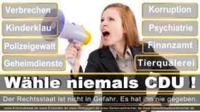 Thomas-Koerner-FDP-Hoevelhof (104)