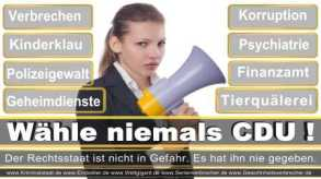 Thomas-Koerner-FDP-Hoevelhof (105)
