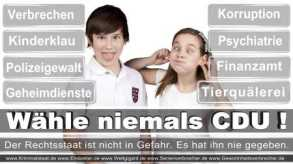 Thomas-Koerner-FDP-Hoevelhof (112)