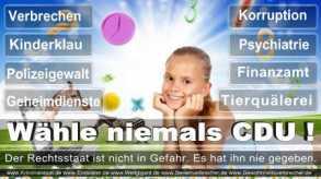 Thomas-Koerner-FDP-Hoevelhof (18)