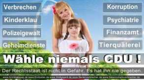 Thomas-Koerner-FDP-Hoevelhof (22)