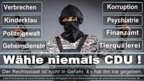 Thomas-Koerner-FDP-Hoevelhof (29)
