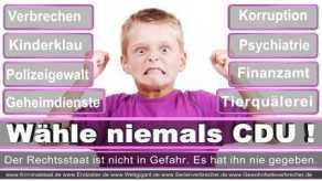Thomas-Koerner-FDP-Hoevelhof (31)