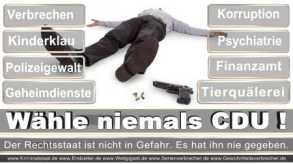 Thomas-Koerner-FDP-Hoevelhof (38)