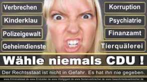 Thomas-Koerner-FDP-Hoevelhof (43)