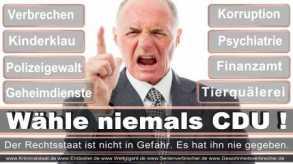 Thomas-Koerner-FDP-Hoevelhof (51)