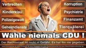 Thomas-Koerner-FDP-Hoevelhof (6)