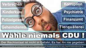Thomas-Koerner-FDP-Hoevelhof (60)