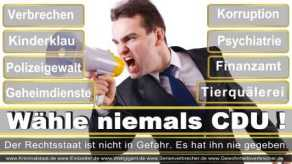 Thomas-Koerner-FDP-Hoevelhof (64)