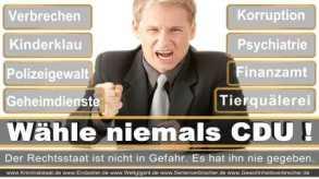 Thomas-Koerner-FDP-Hoevelhof (66)