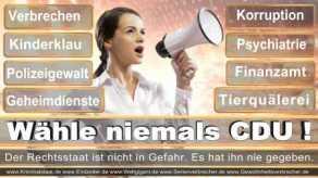 Thomas-Koerner-FDP-Hoevelhof (7)
