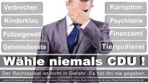 Thomas-Koerner-FDP-Hoevelhof (73)