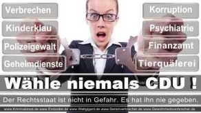 Thomas-Koerner-FDP-Hoevelhof (76)
