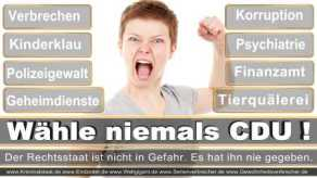 Thomas-Koerner-FDP-Hoevelhof (78)