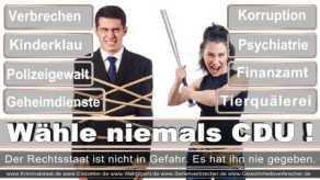 Thomas-Koerner-FDP-Hoevelhof (79)