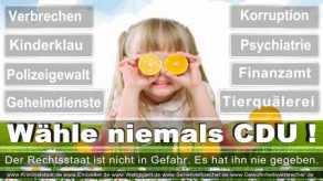 Thomas-Koerner-FDP-Hoevelhof (8)