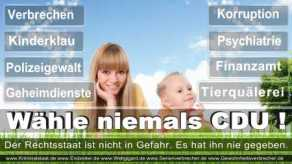 Thomas-Koerner-FDP-Hoevelhof (9)